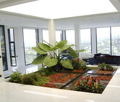Jardin-interior