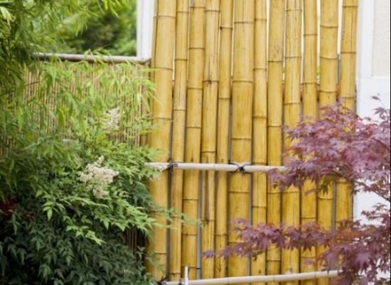 cercaode-bambu-para-su-jardin-01-e1362717734144