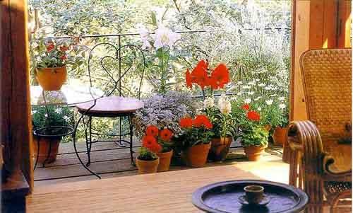 small-garden-at-the-balcony