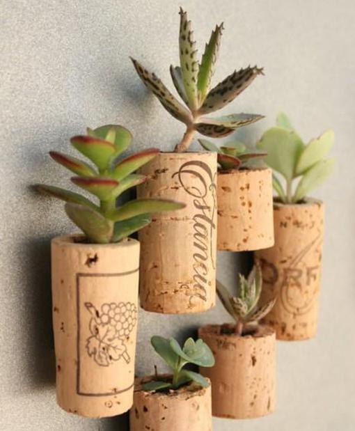 jardines verticalesapones-de-corcho-con-plantas1