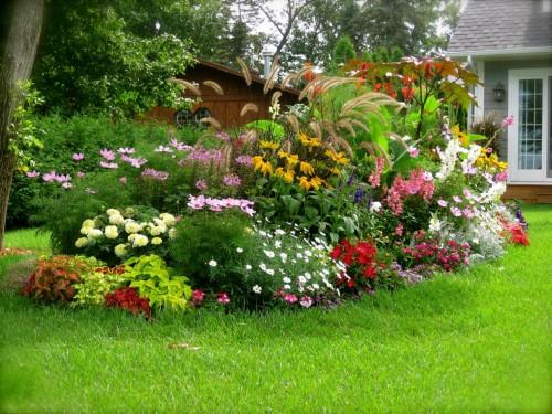 jardinIMG_0991.272141617_large