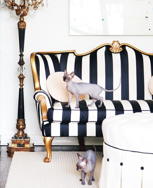 rayasstriped-sofa