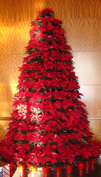 arbol-navideño-de-pascuas