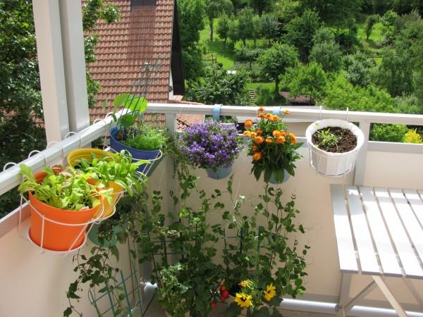 Ideas-para-jardines-pequenos-1