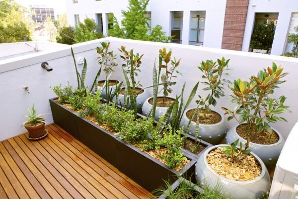 ideas-para-decorar-jardines-pequenos-4-1