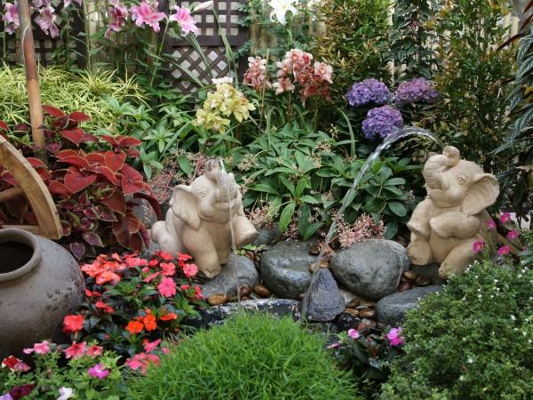 jardin-tropical-1