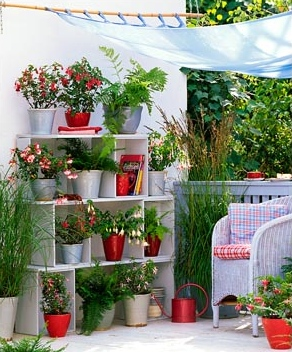 jardin_red_1