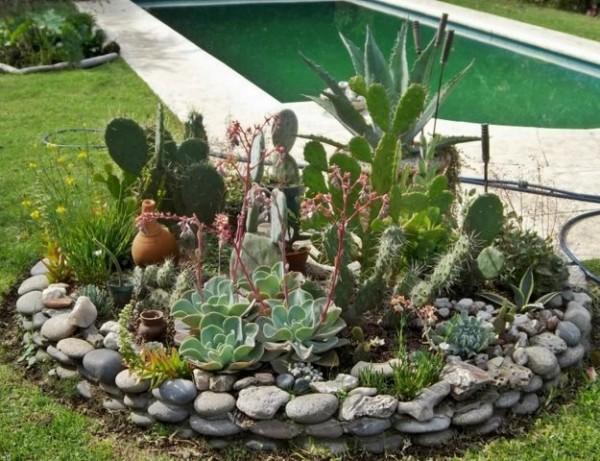 jardines-con-cactus1