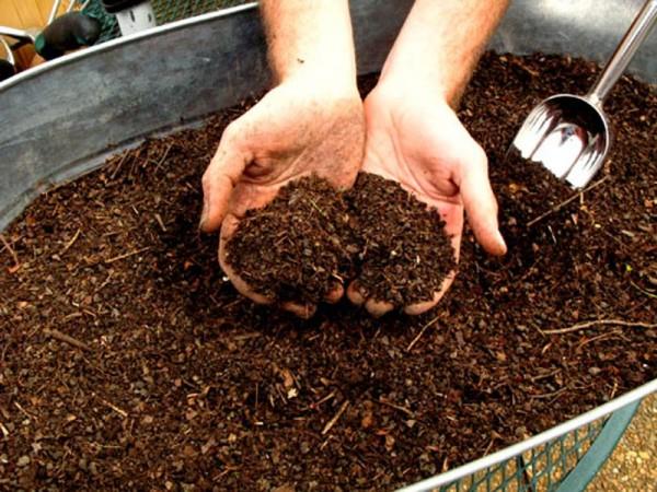 compost-casero