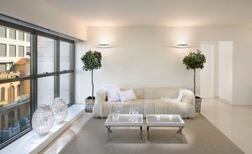 plantas-sala-de-estar